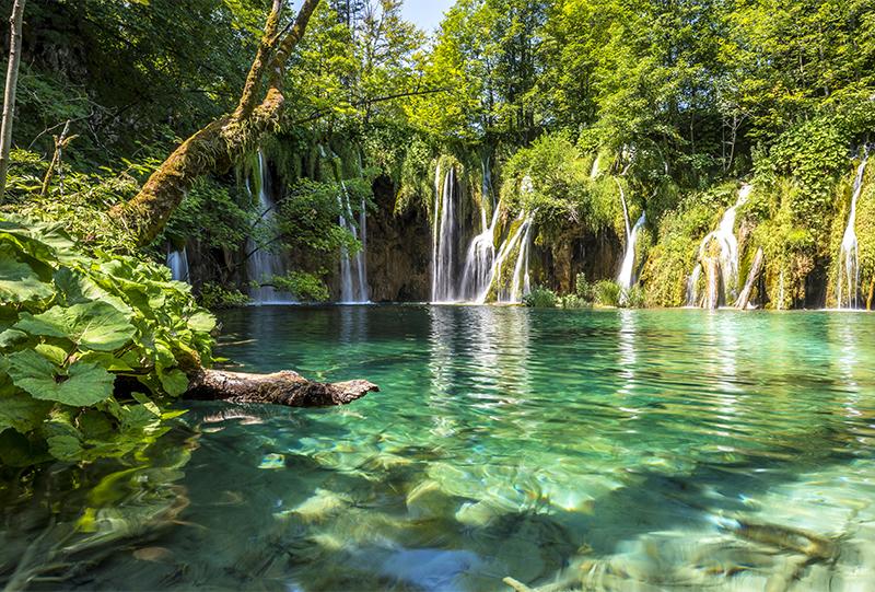Le principe de la filtration pour piscine naturelle