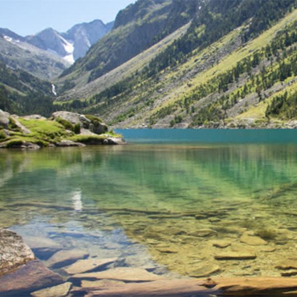 L'eau naturelle pour piscine Vitii