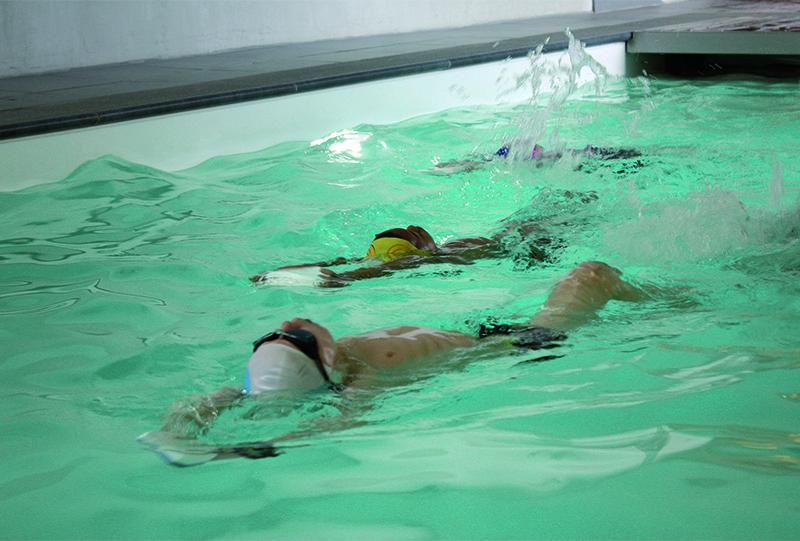 Réalisation d'une piscine naturelle pour Waterplouf