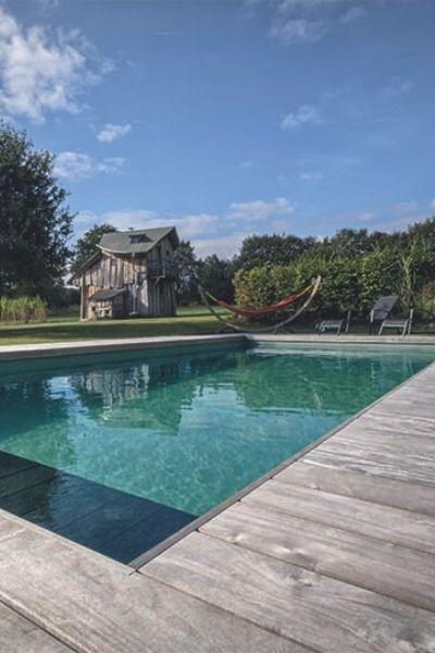 transformer son bassin en piscine naturelle